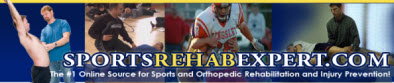 2013 Sports Rehab to Sports Performance Teleseminar