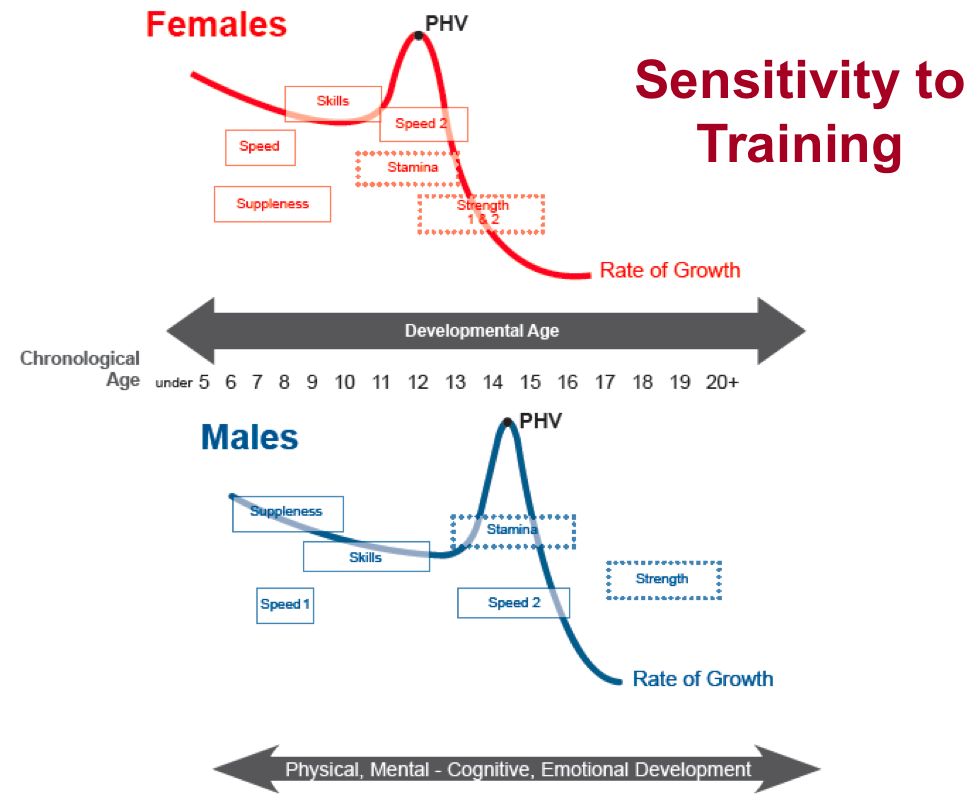 Long-Term Athletic Development-Sensitivity to Training