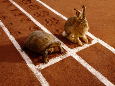 Sports Nutrition Tip: Slow and Steady Wins the Race