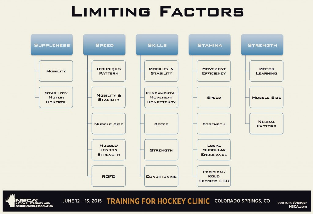 Hockey Training-Limiting Factors to Peak Performance
