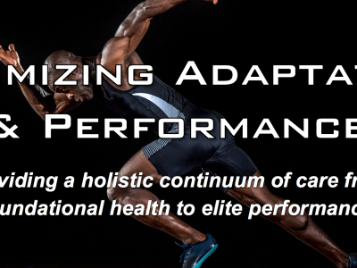Optimizing Adaptation and Performance Seminar