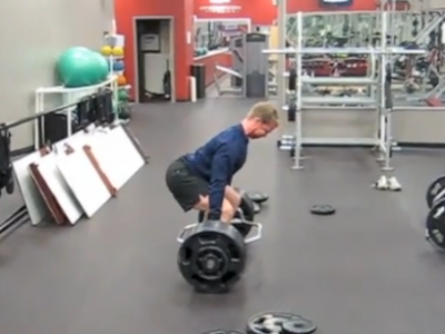 Muscle Properties: Short vs. Stiff