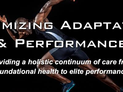 Optimizing Adaptation and Performance Seminar